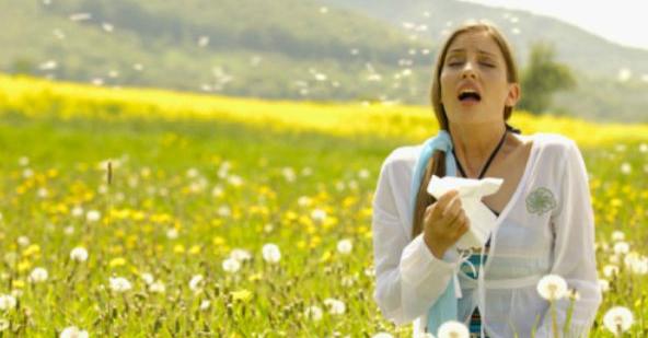 """Resultado de imagen para Las Alergias y la Biodescodificación"""""""